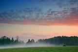 Bull & Evening Mist 68647