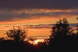 Sunrise 68866