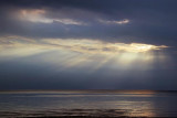 Lake Erie Sunrays 69168