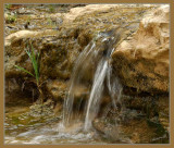 02407 - Mini waterfall / Ein-Ovdat - Israel