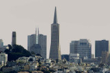 05215 - Coit tower and Tramsamerica building, San Francisco / (from) Alcatraz island - CA - USA