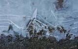 05446 - Frozen plash / Yosemite NP - CA - USA