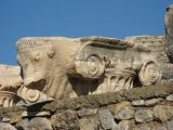 20061115 038 Ionic Capital  with a Ram's head  extention.jpg