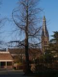 Sint Laurentiuskerk