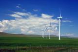 Pincher Creek Windfarm