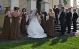Gathering the Wedding Party IV