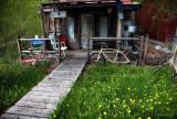 Marysville Cabin