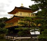 The Golden Pavilion Temple