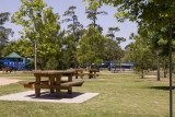 Hermann Park 06