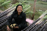 Vendeuse de canne à sucre - Le Mat - Vietnam
