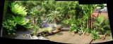 Rob's Garden In Kidderminster (UK)