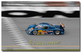 #58 Red Bull Brumos Porsche Riley : Hurley Haywood , David Donohue, Darren Law, Buddy Rice, Scott Sharp,