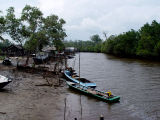 Sungai Kenyamukan - Sangatta. Banyak Buayanya