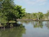Kolam Pancing - Badak