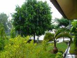 Ketika Hujan