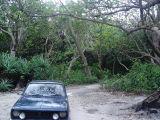 jalan kecil di dalam Cagar Alam