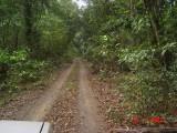 jalan di dalam taman nasional