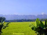 Gunung Karst di Gombong