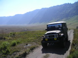 Crossing the Savana