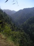 near Semeru