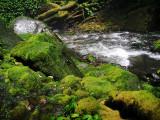 Creek from Pelangi Waterfall