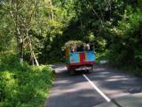 Road between Lumajang - Malang