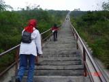 Jalan Panjang Menuju Gunung Galunggung,  Tasikmalaya