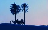 kamela.jpg