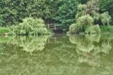 L'étang des Eaux Vives