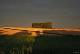 Dans un petit coin de France appelé Picardie,