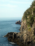 Quoddy Head State Park coast