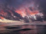 Ocean Motion #2