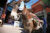 Marrakesh_0598.jpg