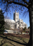 National Cathedral--Washington DC