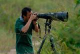 Tawau - Wong Tsu Shi and his 600mm