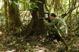 Kinabatangan - Nikon Snipper at Kinabatangan.
