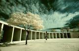 Dec06 - American War Memorial 29491