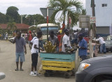 Selling Sugarcane in Lucea