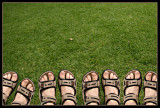 We got new sandals!