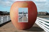 Apple does Windows