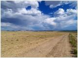 High Plains Desert