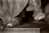 Tennyson's Shoes