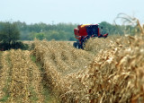 Farming Country
