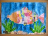 fish, Vicky, age:6