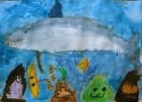 shark, David, age:5