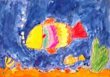 fish, Sophia Su, age:5