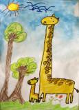 giraffe, Kevin, age:5