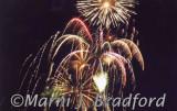 fireworks4448wtmk.jpg