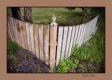 Marthas fence.jpg web