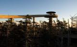 Clingman's Dome 3
